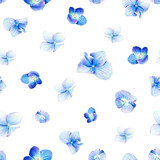 Seamless pattern, blooming blue hydrangea. Illustration by markers, beautiful floral composition on a white background. Imitation of watercolor drawing. - 204811505