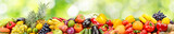 Panorama of vegetables and fruits on abstract green blurred background.