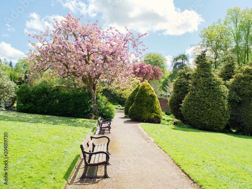 Poster Spring garden,Northern Ireland