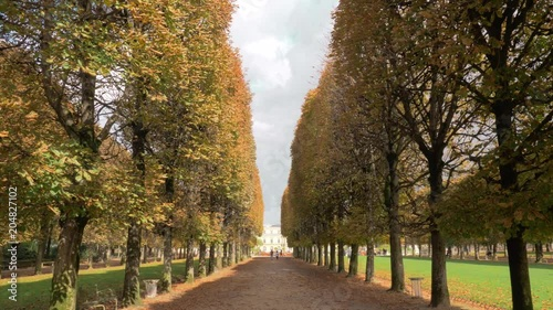Fridge magnet Steadicam shot of strolling on promenade lined with high trees. Walking in Luxembourg Gardens towards the Palace. Scene in autumn