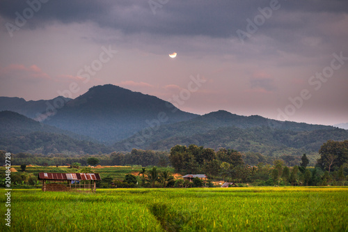 Fotobehang Donkergrijs Twilight by the mountain. The beautiful view over the moonlight. The accommodation is beautiful in nature. Rural lifestyle in Pua District, Nan Province, Thailand.