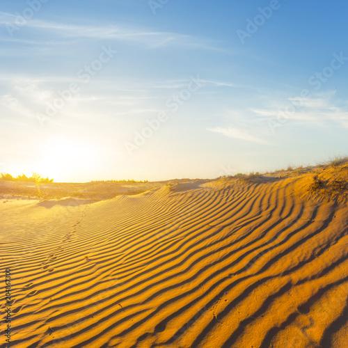 Fototapeta hot sandy desert at the sunset