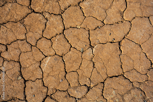 Foto Murales dry cracked earth background
