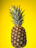 Large ripe pineapple with leaves on yellow background - 204875348