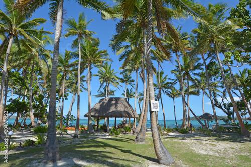Tropical pacific island Fiji