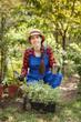 woman gardener holding seedling of tomato