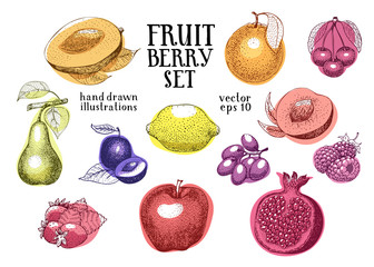 Fruits hand drawn vector illustration set. Retro engraved style illustrations. Can be use for menu, label, packaging, farm market products.