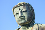 Buddha - 204895368