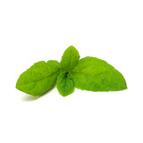 mint leaves isolated on white - 204906799