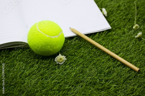 Fotobehang Tennis Note for tennis ball are on green grass