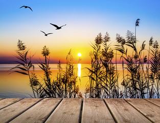 puesta de sol en el lago  © kesipun