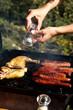 Quadro grillades au barbecue