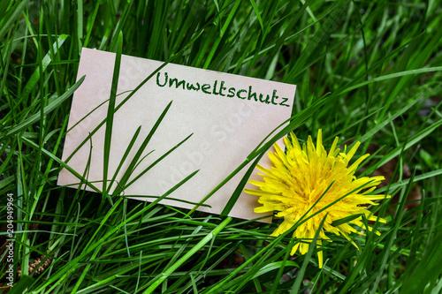 Fotobehang Groene Umweltschutz