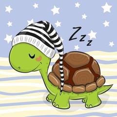 Sleeping cute Turtle in a hood