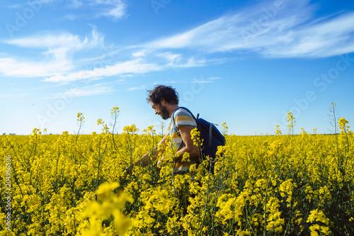 Fototapeta Junger Mann läuft durch ein sommerliches Rapsfeld