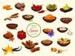 Постер, плакат: Spice condiment and food seasoning poster