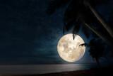 Beautiful fantasy of tropical beach with star in night sky, full moon - dreamlike wonder nature.