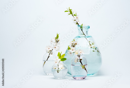 Plexiglas Kersen Glass Vase with blooming white cherry flowers on a blue background.
