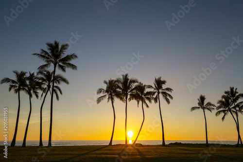 Plexiglas Galyna A. Tropical beach