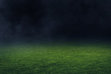 Soccer stadium field © fotokitas