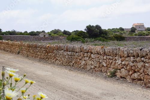 Aluminium Cappuccino Pairies fleuries et murets en pierre à Minorque, île paradisiaque des Baléares, Espagne