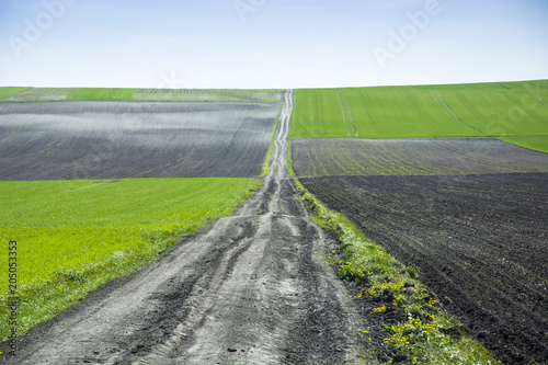 Fotobehang Wit Long country road through the fields towards the horizon