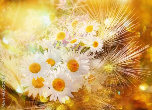 Fotobehang Zwavel geel Bright bouquet with camomilles