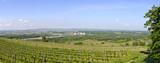 Danube valley east of Krems