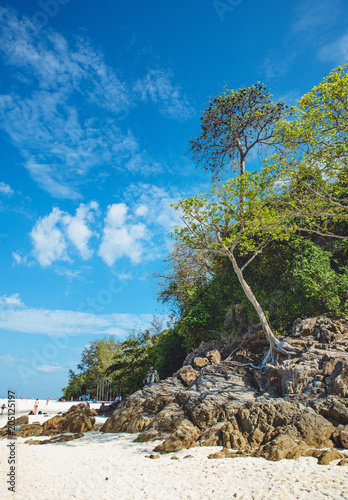 Fridge magnet Beautoful asian landscape of a rainforest and an ocean
