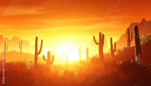 Plexiglas Rood traf. desert at sunset, rocky desert arizona with cacti under the setting sun, 3D rendering