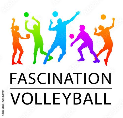 Volleyball - 160