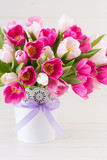 Pink tulip on the white background. Easter background - 205206796