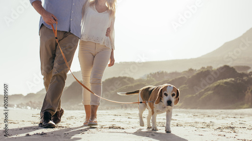 Couple walking their pet dog on beach