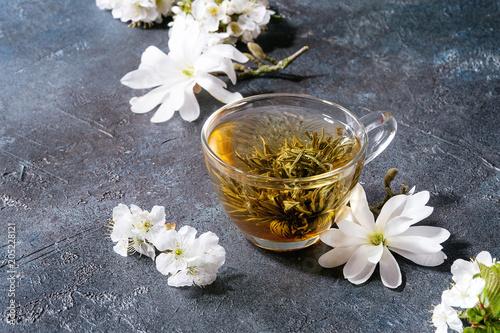 Szklana filiżanka gorąca zielona herbata z wiosna kwiatów magnolii i bielu kwitnącymi gałąź nad zmrokiem - błękitny tekstury tło. Skopiuj miejsce.
