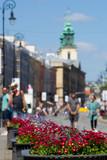 Blooming flowers in Warsaw.