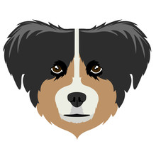 Australian Shepherd Avatar Sticker