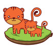 cute tigers on the grass over white background, colorful design. vector illustration