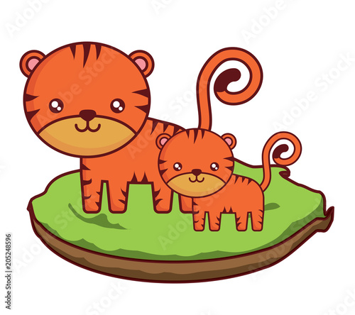 Obraz na płótnie cute tigers on the grass over white background, colorful design. vector illustration
