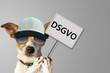 Leinwanddruck Bild - Hund mit Schild DSGVO - Datenschutz-Grundverordnung