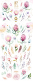 Hand drawing isolated watercolor floral illustration with protea rose, leaves, branches and flowers. Bohemian gold crystal frames. Elements for greeting wedding card. - 205300535