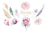 Hand drawing isolated watercolor floral illustration with protea rose, leaves, branches and flowers. Bohemian gold crystal frames. Elements for greeting wedding card. - 205300989