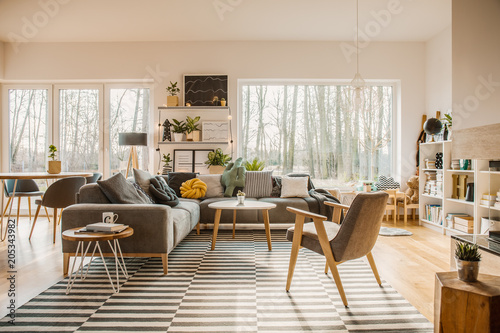 Gray, wooden furniture in a spacious living room interior with white walls and outside nature view