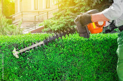 Aluminium Groene Garden gasoline scissors, trimming green bush, hedge. Working in the garden.