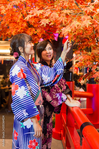 Young woman wearing japanese traditional kimono in autumn color with red wood bridge. Japan - 205364124