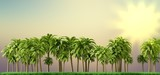 Palm trees, beautiful tropical background, vintage filter, 3d rendering - 205383725