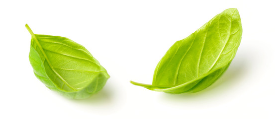 fresh herb, fresh basil leaves isolated on white © amy_lv