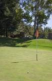 Golf course. Details