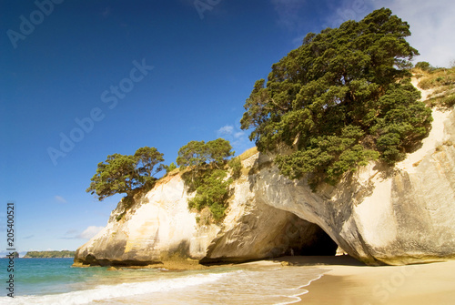 Foto Spatwand Cathedral Cove Cathedral Cove at Coromandel Peninsula, North Island, New Zealand.