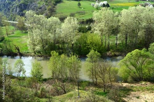 Plexiglas Pistache landscape of the river