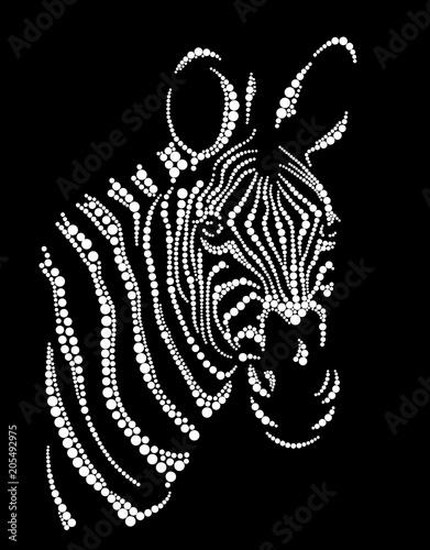 Fototapeta Head of a zebra